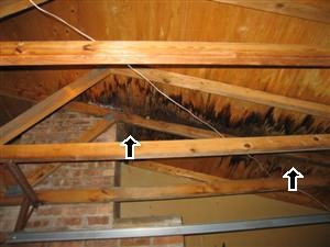 The arrows point to spots indicating water damage in the attic.