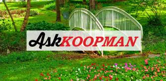 Ask Koopman: Shade Gardens