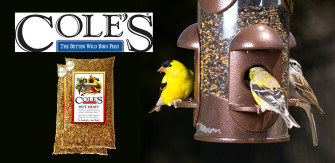 Cole's Bird Seed – Keep The Squirrels Away