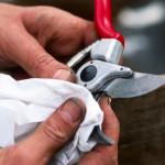 clean your garden tools