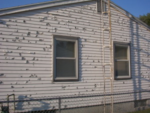 Hail damage without Hardie Board