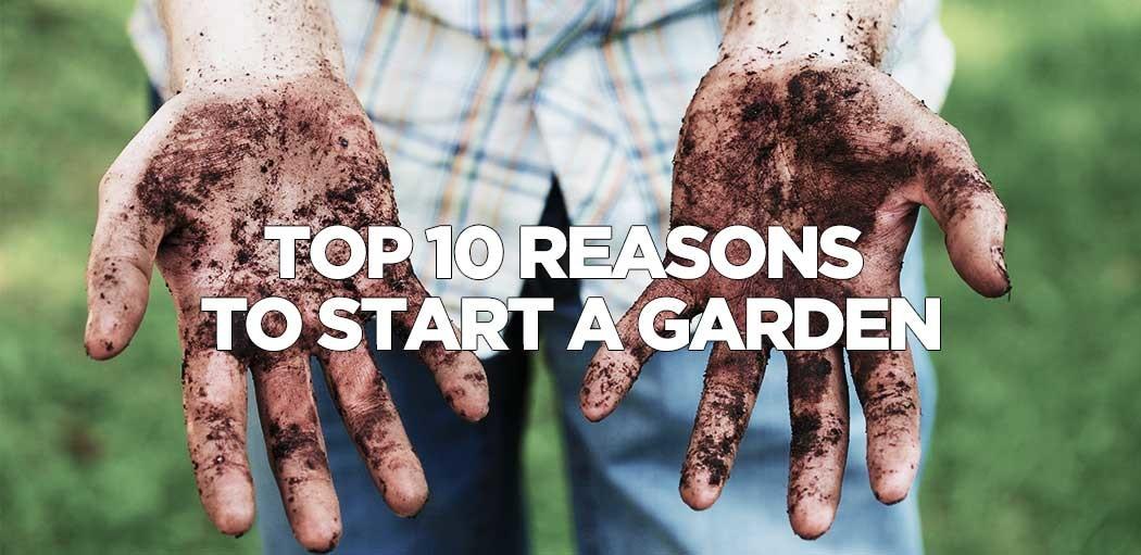 top-10-reasons-to-start-a-garden