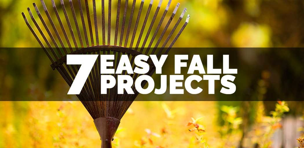 7-easy-fall-projects