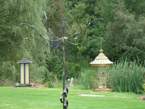 Staging a bird feeder in your yard