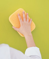 cleaning wall with a sponge