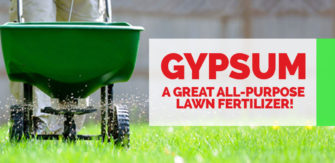 Gypsum – A Great All-purpose Lawn Fertilizer!