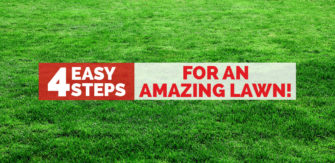 4 Easy Steps For An Amazing Lawn!