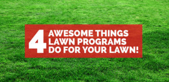 4 Awesome Things Lawn Programs Do For Your Lawn!